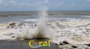 Digha Sea Beaches - Hotel Coral