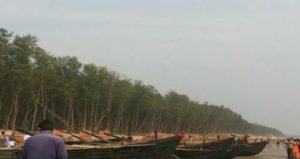 Digha Tourism - casuarina trees digha