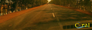 road trip digha