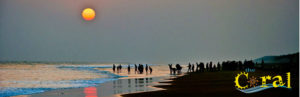talsari beach near digha - hotels in digha - Explore Some Virgin Beach Near Digha with Hotel Coral