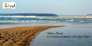 Talsari Beach near Digha | hotels in Digha | Resorts in Digha | Hotel Coral